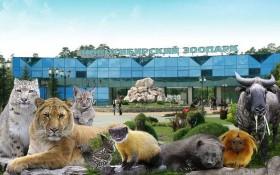 Зоопарк в новосибирске